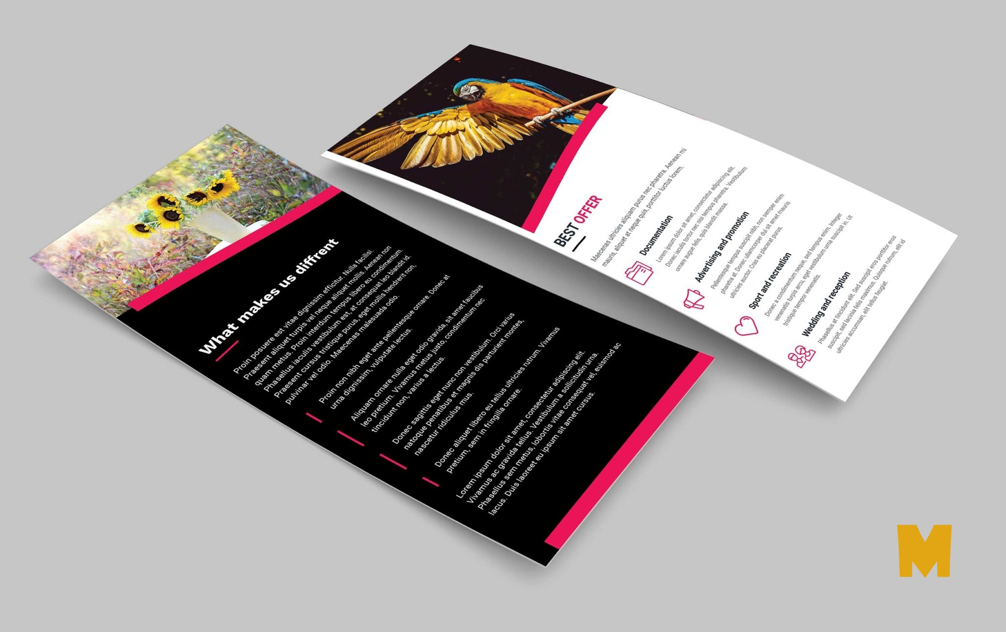 Photography Business DL Brochure Template